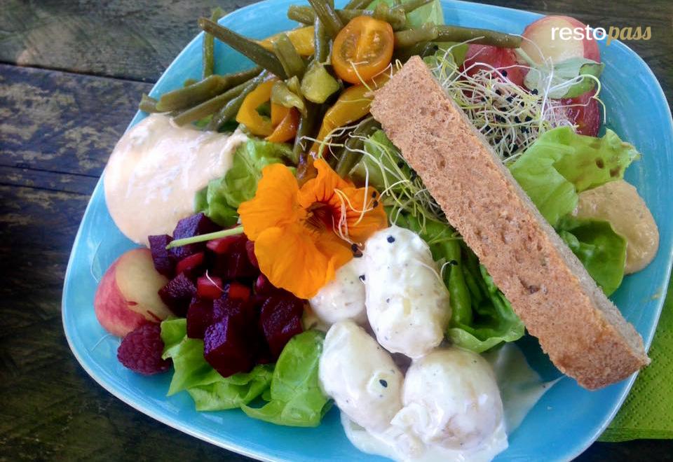frenz salade